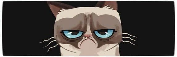 Vamers - Artistry - Grumpy Cat Phtobombs Disney Classics - Banner