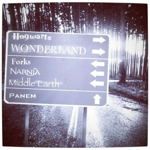 Vamers - Humour - Which Path Would You Choose